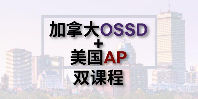 上海建桥国际高中